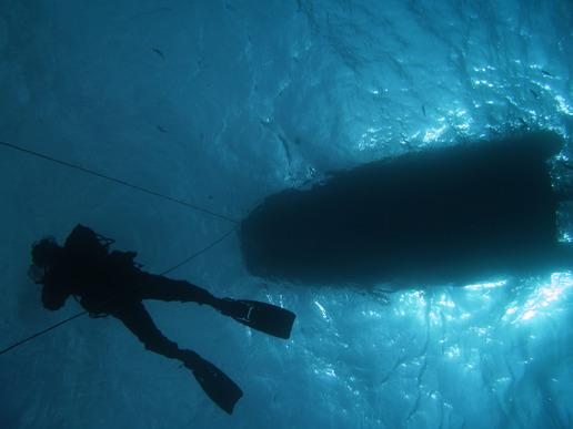 photodune-3040931-diving-xs